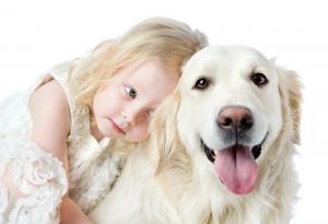 dog breeds prone certain types cancer