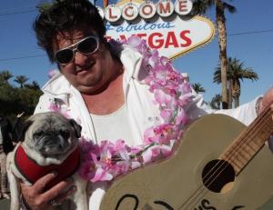 Las Vegas veterinarian