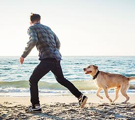 running with dog- Pet health animal hospital