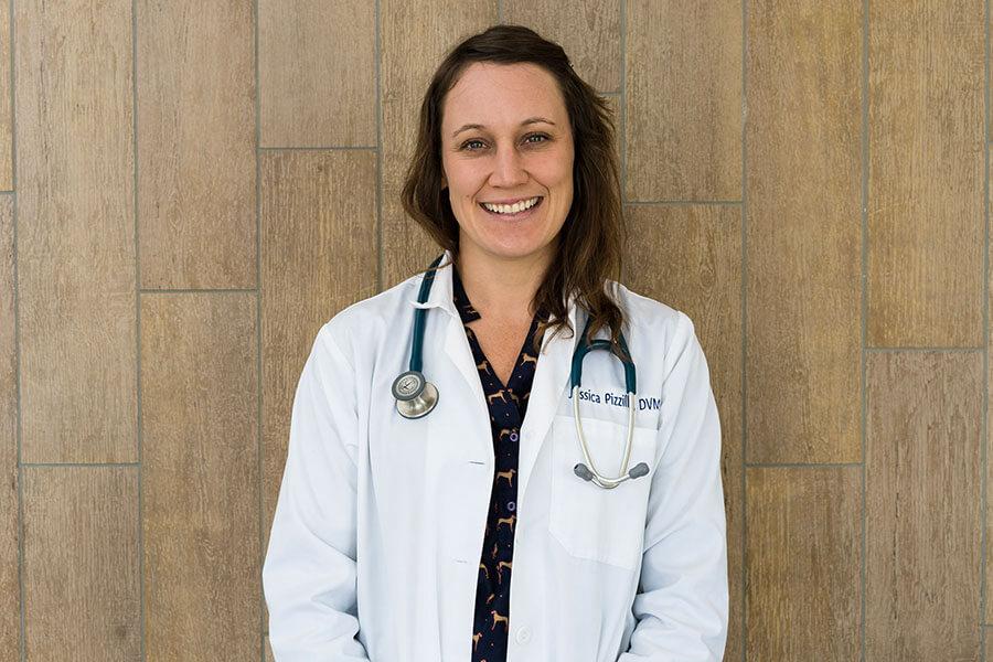 Dr. Jessica Pizzillo, DVM, CCRT-pet health animal hospital